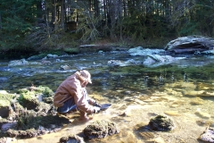 Harris River Gold Panning