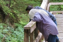 Beaver Falls Boardwalk