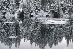 2012-01-22 Icy water 016
